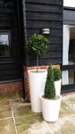 Pure Straight Round HIGH Planters